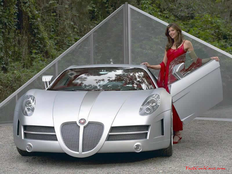 Stylish lady with high dollar sports car